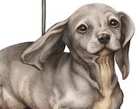 Dog Copter