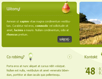 OSTRP.web