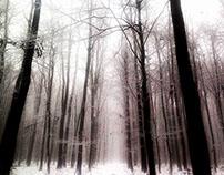 White End (of November)