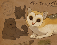 Fantasy Field Guide (fake book proj.)