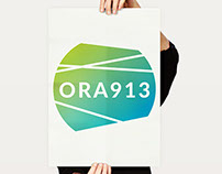 ORA913