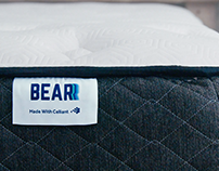 Bear Mattress / Get One of These