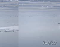 Faceapp on the animals