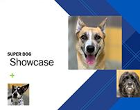 Super Dog Showcase