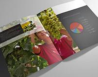 Proder Brochure Design