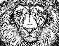 vaLion | pen drawing | 2015