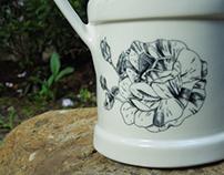 Botanical illustrations: Gallica rose