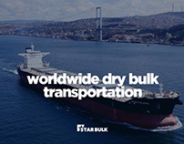 Worldwide Dry Bulk Transportation
