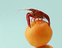 小龙虾crayfish