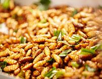 Món ăn hiếm chỉ có ở đồng bằng sông Cửu Long từ loài on