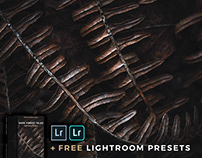 DARK FOREST TALES + Free Lightroom Presets