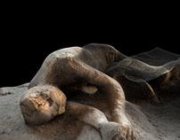 Pompei | Plaster cast