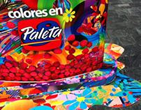 CAMPAÑA PALETA \ BLANCO HUESO