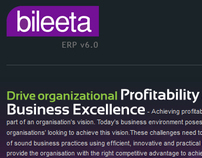 Bileeta - Company Website