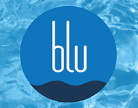 Identity for Blu Pools & Spas