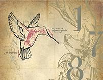 Poster Design: Bodoni Typeface