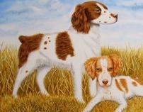 ART - Animals