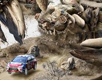 WRC Campaign for Citroën