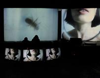 AV Performance: Inside_ visuals: Jago, music: Pleq