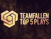Team Fallen Branding