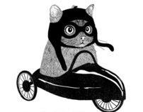 Koty miejskie