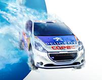 COPEC WRC