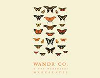 Wandr Co. 'The Nectar'