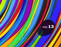 EXP 13