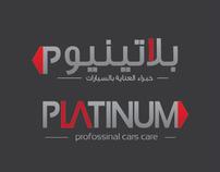 Platinum Car Polishing