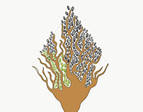Patterns : Diamond Tree