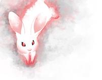 Freie Arbeit ○ White Animals