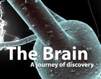 The BRAIN Exhibition Design Concept