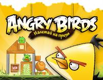 Angry birds & Beeline