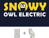 Snowy Owl Electric