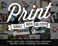 Pack Of 100 Flyers, Brochures, Business Cards