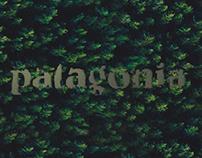 Patagonia - Preselección UDP para Art Director
