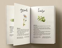 Aromas de la Tierra Editorial Design