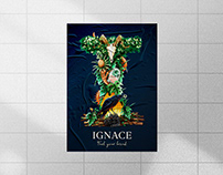 Branding Identity | Ignace