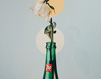 Solo Exhibition الورد جميل