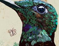 Bird nature