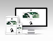 Website for Wordpress