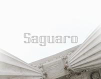 Saguaro Typeface | 4 Styles