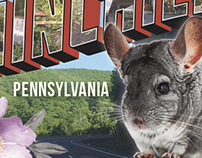 Greetings from Chinchilla, PA Postcard