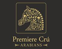 Premiere Cru Arabians Logo Design