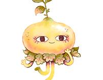 Lemon Fairy + Timelapse