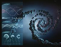 Inside DNA
