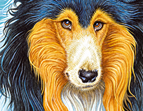Lassie Come-Home / book