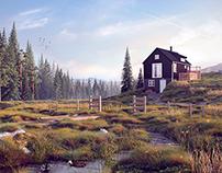 Northern landscapes