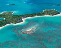 Corona Guitar Island