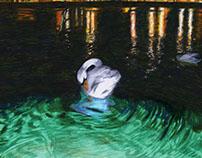l'HO / the plunge // swan